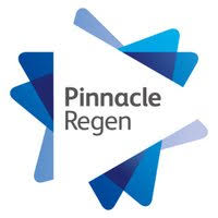 Pinnacle Group